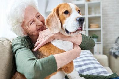 Informationen zu Pflegemaßnahmen mithilfe tiergestützter Therapie